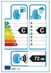 Hankook auto guma Winter i'cept EVO2 W320 TL 245/50R18 104V XL E