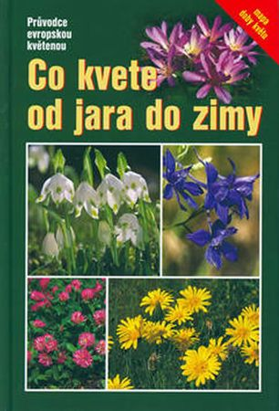 Dreyer Eva: Co kvete od jara do zimy