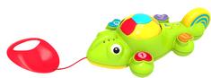 Alltoys Zvukový chameleon - tahací