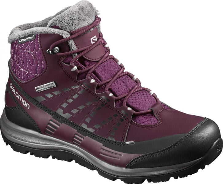 Salomon Kaïna Cs Wp 2 Bordeaux/P.Black/Al. 38.0