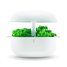 Plantui 6 Smart Garden, biela