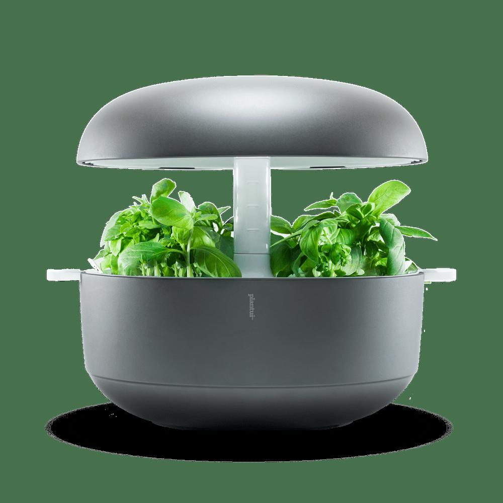 Plantui 6 Smart Garden, šedá