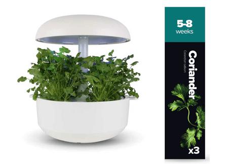 Plantui náplň pro smart květináč - Koriandr, 3ks v balení