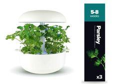Plantui náplň pro smart květináč - Petržel, 3ks v balení