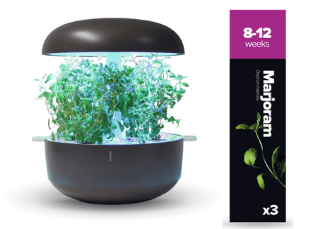 Plantui náplň pro smart květináč - Majoránka, 3ks v balení