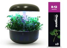 Plantui náplň pro smart květináč - Oregáno, 3ks v balení