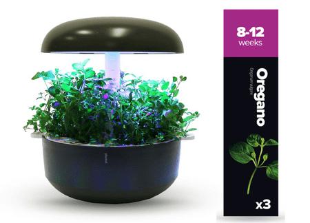Plantui náplň pre inteligentný kvetináč - Oregano, 3ks v balení
