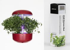 Plantui náplň pro smart květináč - Chili Demon Red, 3ks v balení