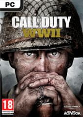 Activision Call of Duty: WWII (PC)