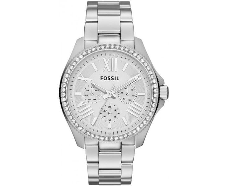 Fossil Cecile AM 4481