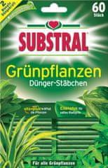 Substral gnojilne paličice za zelene rastline, 60 kosov