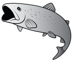 Delphin Nálepka Pstruh Silver