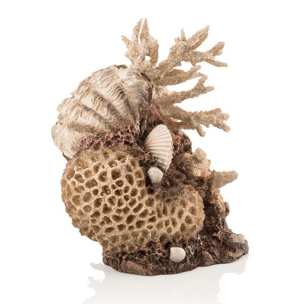 Oase Akvarijní dekorace mořský korál s mušlí