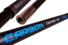 Delphin Podběráková Tyč Carbon Telehandle 260