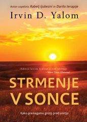 Dr. Irvin D. Yalom: Strmenje v sonce, mehka