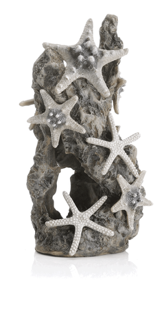 Oase Kámen s mořskými hvězdicemi
