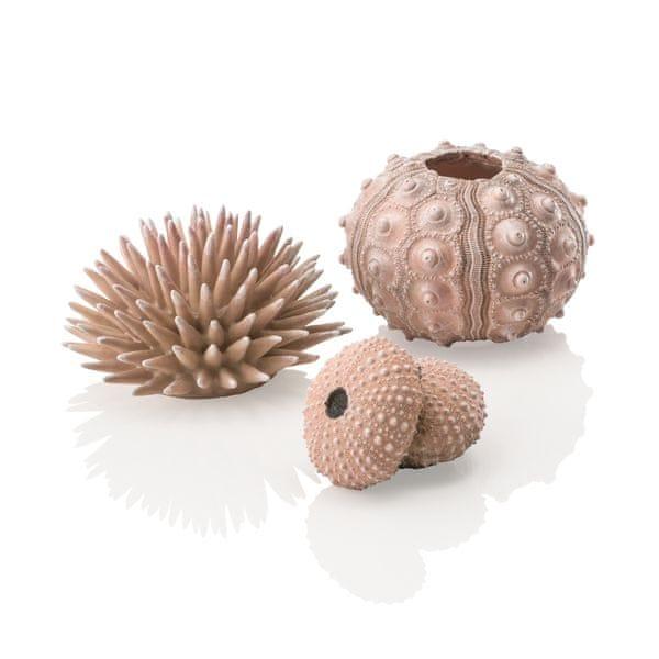 Oase Akvarijní dekorace mořští ježci přírodní