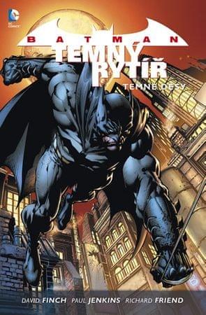 Finch David: Batman: Temný rytíř 1 - Temné děsy