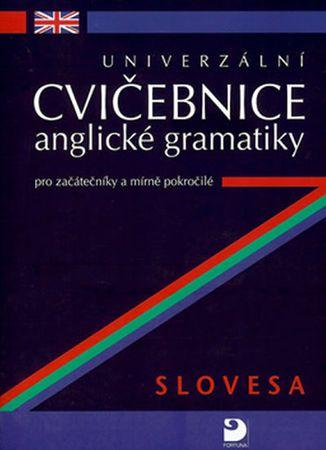 Kácha Petr: Univerzální cvičebnice anglické gramatiky pro začá