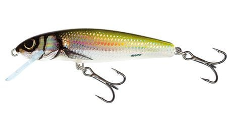 Salmo Wobler Minnow Floating Holo Bleak 7 cm, 6 g