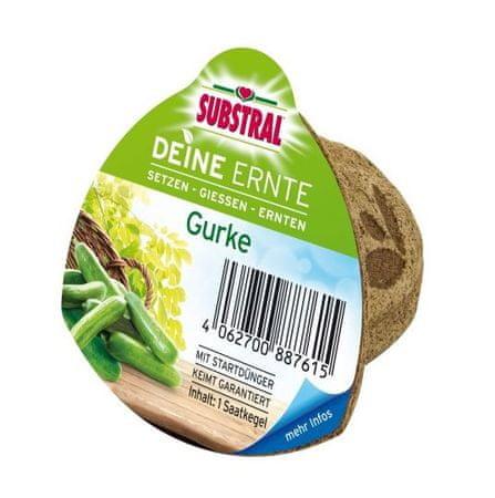Substral sadilni lončki s semeni, kumare