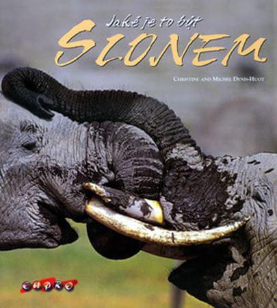 Denis-Huot CHristine,Michel: Jaké je to být slonem