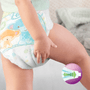 7 - Pampers Pleny Premium Protection Active Fit 5 Junior 136 ks