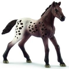 Schleich figurka źrebaka rasy Appaloosa 13862