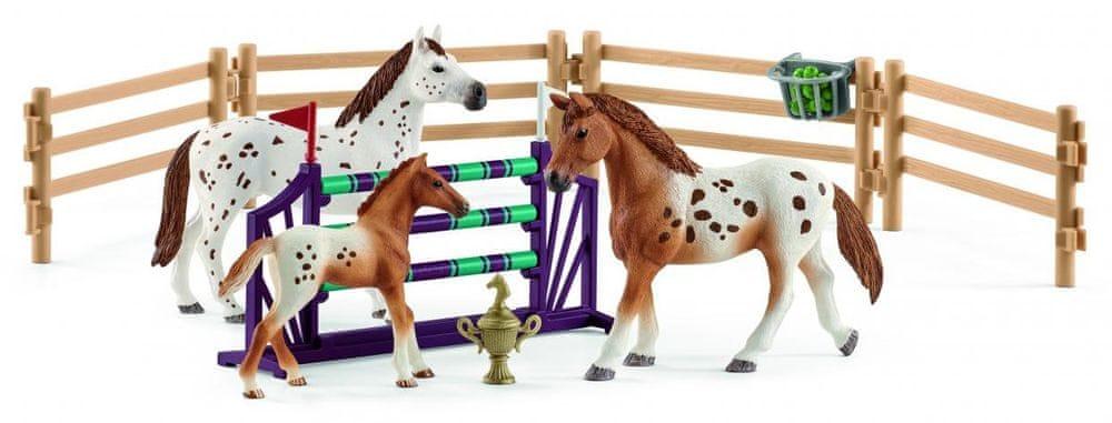 Schleich Set appalosští koně a tréninkové příslušenstí 42433