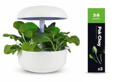 Plantui náplň pro smart květináč - Pok Choy, brukev - zelí čínské, 3ks v balení