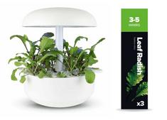 Plantui náplň pro smart květináč - Leaf Radish, ředkev setá, 3ks v balení
