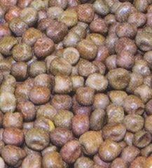 Mikbaits partikl javorové semínko 1 kg