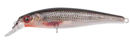 Spro Wobler Ikiru Naturals Silent Jerk Roach 6,5 cm, 6 g