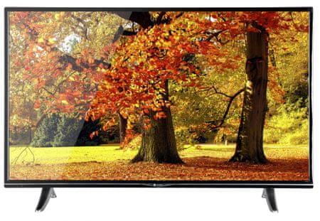 GoGEN telewizor LED TVU 43V298 STWEB