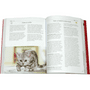 2 -  Lori Paximadis, Kristen Hampshire, Riris Bass: Vse o mačkah v 365 dneh