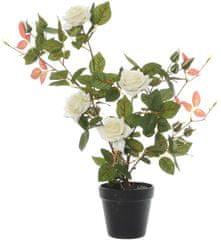 Kaemingk Ružový ker v kvetináči, biely, 50 cm