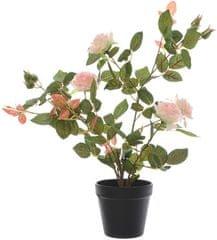 Kaemingk Ružový ker v kvetináči, ružový, 50 cm