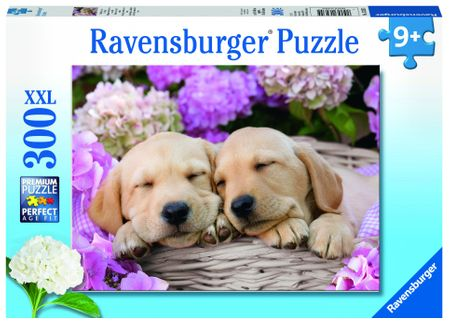 Ravensburger puzzle Sweet Dogs 300 elementów