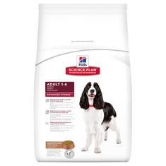 Hill's SP Canine Adult Lamb & Rice Kutyaeledel, 12 kg