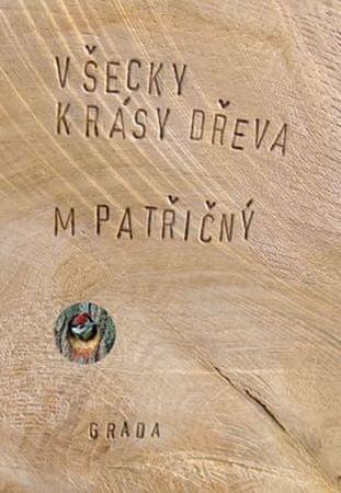 Patřičný Martin: Všecky krásy dřeva