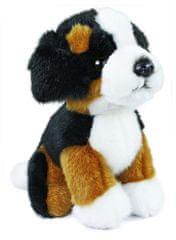 Rappa pluszowy berneński pies pasterski, w pozycji siedzącej, 18 cm