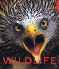 Barta a kolektív Vladimír: Wildlife - život zveri vo voľnej prírode