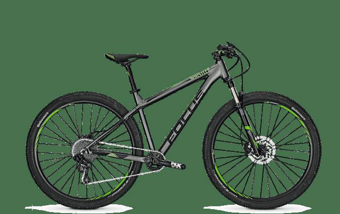 Focus Whistler Pro 29 2018 Irongrey Matt horské kolo, vel. L