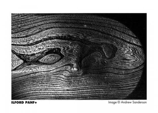 Ilford film PAN F Plus 135-36
