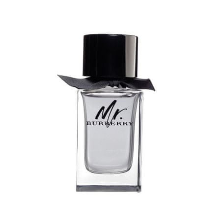 Burberry Mr. Burberry - woda toaletowa 150 ml