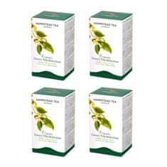 Hampstead Tea London BIO selekce zelených čajů 20ks x 4