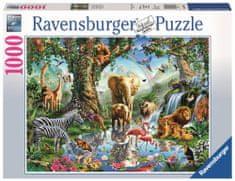 Ravensburger sestavljanka pustolovščin v džungli, 1000 kosov