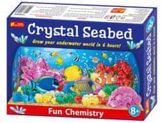 Lamps Podmořský svět krystaly - experimentální sada