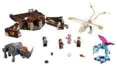 LEGO čarobna bitja,Harry Potter (75952)