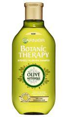 Garnier šampon za suhe in poškodovane lase Botanic Therapy, 250 ml